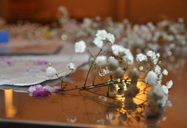 closeup fleurs une