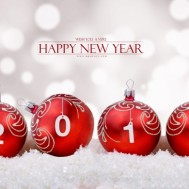 Bonne année 2015 à vous toutes + grande annonce !